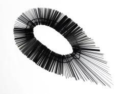 """""""Black Swan"""", carbone"""